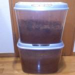 カブトムシの幼虫の育て方!飼育のコツはマット交換と水!