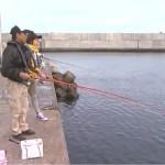 アジ釣りの時期と釣り方は?初心者におすすめのサビキ釣り!
