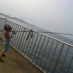 横須賀の釣りうみかぜ公園!家族連れ必見のサビキ釣りポイント