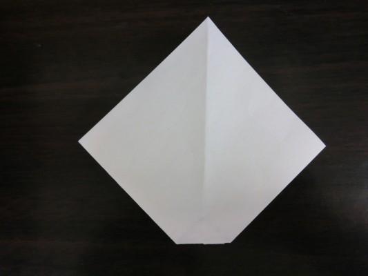 CIMG2336