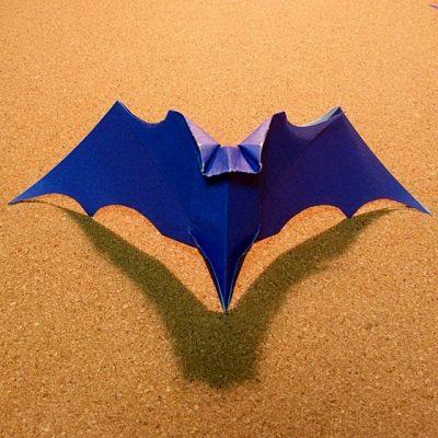 bat_20