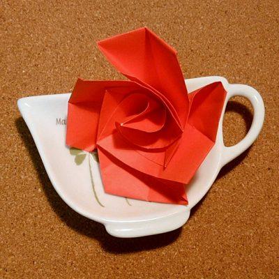 rose_30